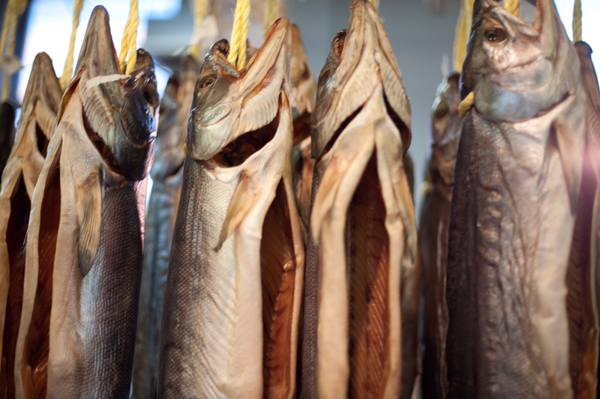 名産 新巻鮭