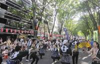東北の元気を発信する仙臺(せんだい)すずめ踊り
