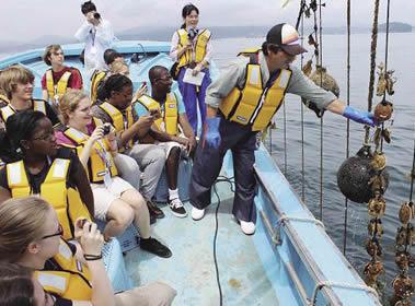 [南三陸] 漁業体験プログラム再開 地元の資源を活かした観光を