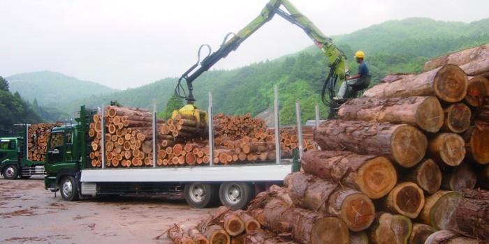 林業とエネルギーの明日を考える 岩手県住田町の挑戦【前編】