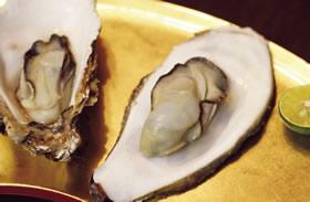 おいしい復興 今が旬!プルップルでプリップリ 三陸の牡蠣を食らう
