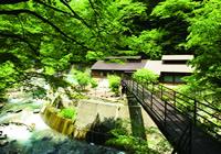 秘湯探訪vol.8 福島県西白河郡・甲子温泉「旅館大黒屋」
