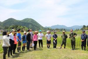 5月上旬に行われる栽培研究会が主催する田植えには、今年もさまざまな繋がりの人々が訪れて春の農村を満喫していた。田植えの他にも、草取り、稲刈りは毎年恒例のイベントとなっている。