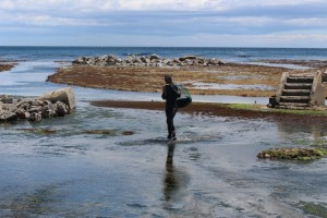 ウニを育てるウニ牧場。当時の組合長、生産者の判断で、40年ほど前に浅瀬の岩盤を削り築いた。4年間で食べ頃に育つウニは、最後の1年間、ここで北三陸わかめや昆布をたっぷり食べて育つ。エサの違いが味の違いとなる。