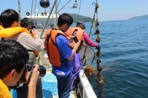 02釜石は「鉄と魚とラグビーの街」。漁業は観光戦略でも重要なコンテンツ