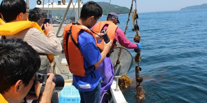 「釜石は観光地ではない」住民重視の観光戦略