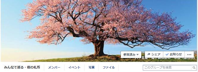 東北・夢の桜街道ー桜旅の魅力をシェアして東北を応援しよう!