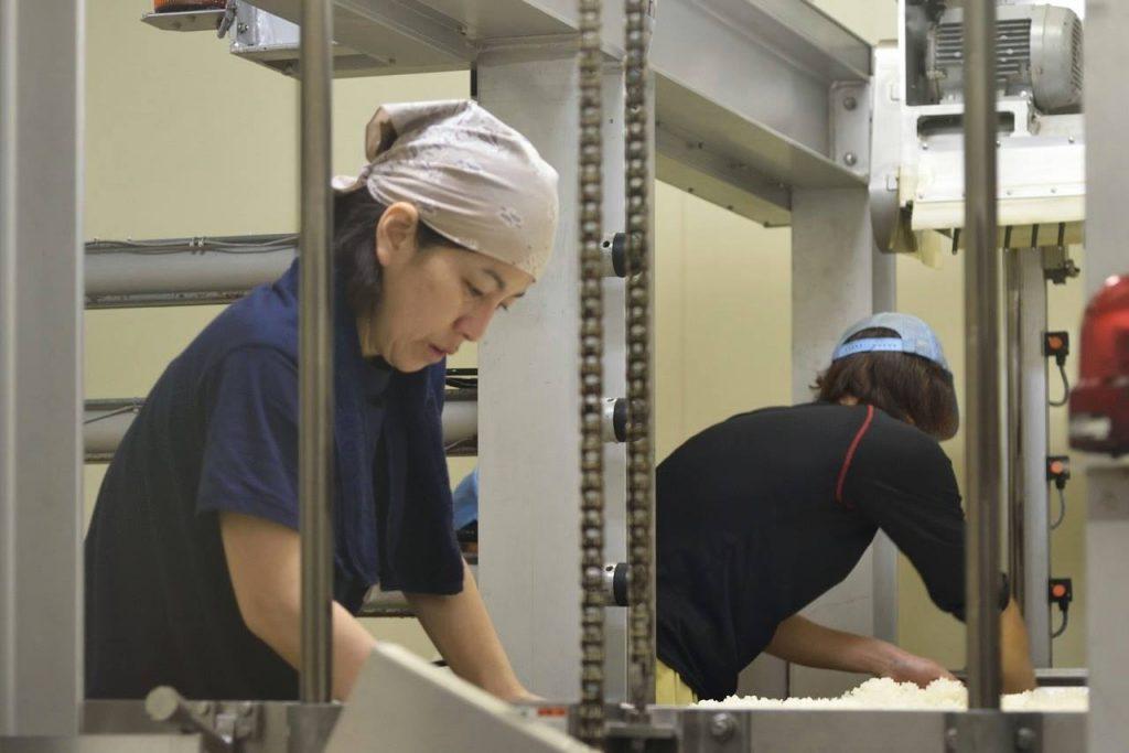 麹米造りの作業に取り組む杜氏:柏木純子さん